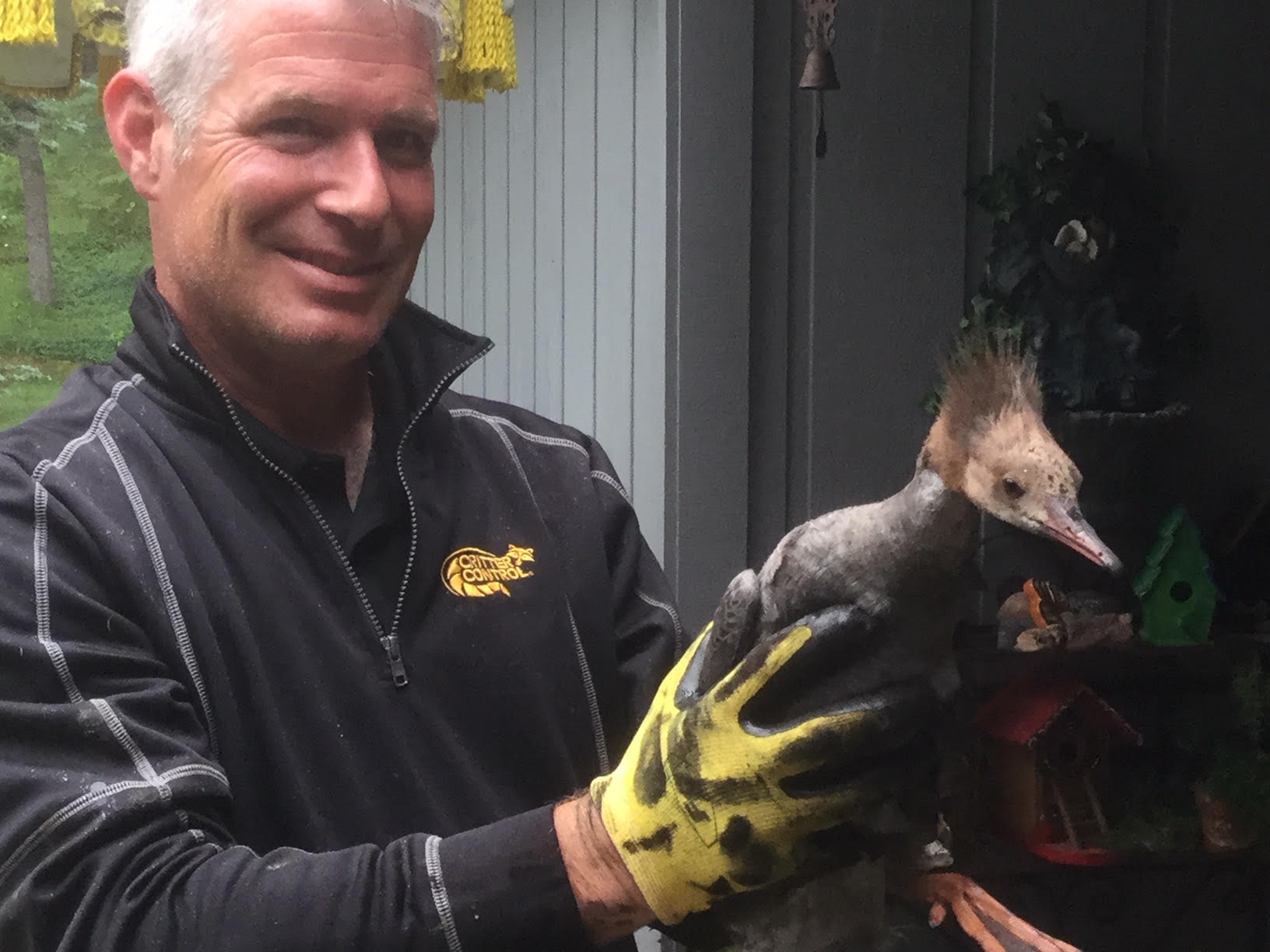 Critter Control technician holding removed wildlife in Milwaukee.